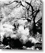 Dreamy Gardens - 1007 Metal Print