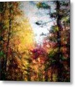 Dreamy Nature Walk Metal Print