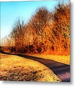 Dreamy Pathway Metal Print by Thomas  MacPherson Jr