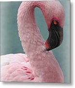 Dreamy Pink Flamingo Metal Print