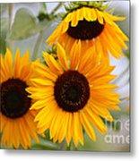 Dreamy Sunflower Day Metal Print