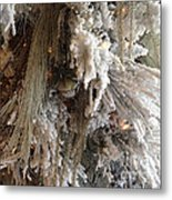 Dreamy Trees Ethereal Winter White Snow On Trees Nature Winter White Metal Print