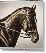 Dressage Horse Old Photo Fx Metal Print by Crista Forest