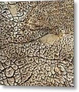Dried Mud Pan It Time Of Drought Metal Print