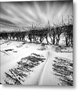 Drifting Snow Metal Print by John Farnan