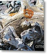 Driftwood Abstract Metal Print