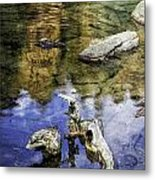 Driftwood And Reflections Metal Print