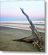 Driftwood At Dusk Metal Print