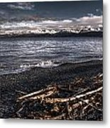 Driftwood At Land's End Metal Print