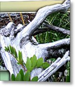 Driftwood Escape Metal Print