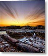 Driftwood Metal Print by Mark Leader