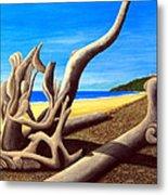 Driftwood - Nature's Artwork Metal Print