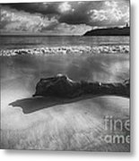 Driftwood On A  Beach Metal Print by George Oze