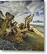 Driftwood On Rialto Beach Metal Print
