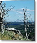 Gnarled Trees And Divide Mountain Metal Print