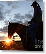 Drinking In The Light Metal Print
