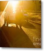 Driving Into The Sun Metal Print by Colin and Linda McKie
