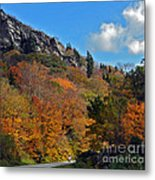 Driving Through Autumn's Beauty   Metal Print
