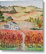 Driving Through Paso Robles Metal Print