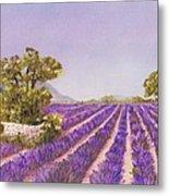 Drome Provence Metal Print