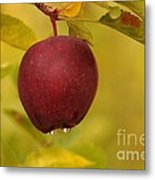 Droplets From A Red Apple   Metal Print