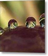 Droplets On An Apple Metal Print