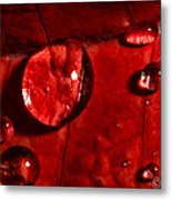 Droplets On Red Metal Print
