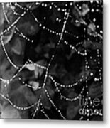 Droplets On The Web Bw Metal Print