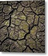 Drought Metal Print