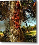 Druid Oak Metal Print