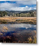 Dry Lagoon In Winter Panorama Metal Print