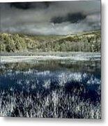 Dry Lagoon Winter Metal Print