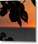 Dry Season Sunset Metal Print