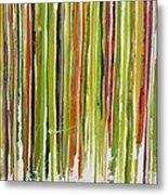 D.s. Color Band Skinny Metal Print