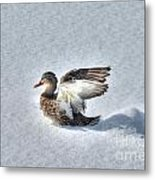 Duck Angel Metal Print