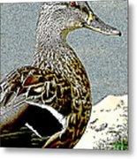 Duck Art Tribal Mallard Metal Print