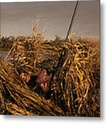 Duck Hunter In Blind Metal Print by Ron Sanford