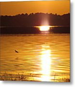 Duck On Sunset Metal Print