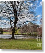 Duck Pond Haverford College Metal Print