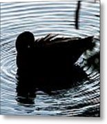Duck Waves Metal Print