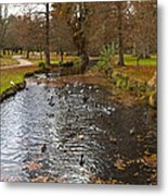 Ducks And Leaves Metal Print