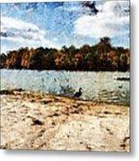 Ducks At The Beach Again Metal Print