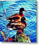 Ducks On A Log Metal Print