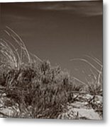 Dune And Blue Sky Metal Print