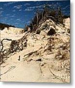 Dune Glue Metal Print