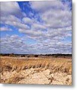 Dune Grass And Clouds Metal Print