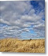 Dune Grass And Sky Metal Print