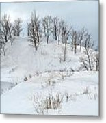 Dune Trees And Snow Metal Print