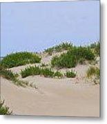 Dunes And Grasses 6 Metal Print