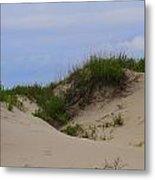 Dunes And Grasses 8 Metal Print